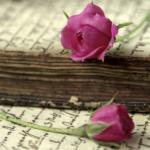 【書き出し】がわかる!!結婚式の花嫁の手紙の書き方